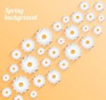 Link toSpring white floral background vector