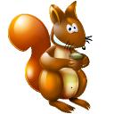 Squirrel icons