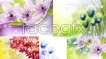 Link toStars dotted dream flower psd