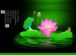 Link toStatic road lotus psd