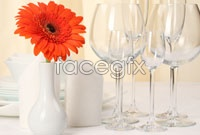 Link toStemware definition pictures