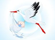 Link toStork baby cartoon vector free