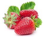 Link toStrawberry high definition pictures psd