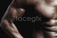 Link toStrong chest muscles hd picture