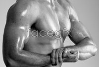 Link toStrong muscles show hd pictures