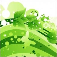 Link toSummer floral vector graphic