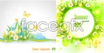 Link toSummer flowers background vector