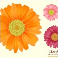 Link toSummer flowers