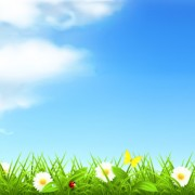 Link toSummer with flowers backgrounds 01 vector