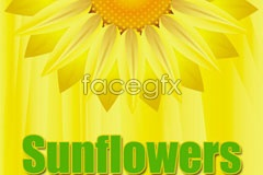 Link toSun-flower and butterfly vector