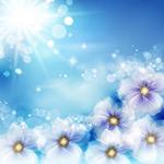 Link toSun flowers vector