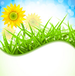 Link toSunflower meadows vector