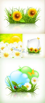 Link toSunflowers and chamomile flower vector