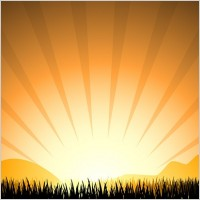 Link toSunset radiation light elements such as grass vector silhouette