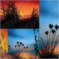 Link toSunset scenery vector material