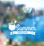 Link toSunshine coast summer backgrounds vector