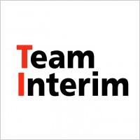 Link toTeam interim logo