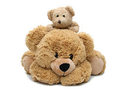 Teddy bear toy 01-hd pictures