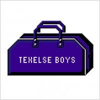 Link toTexelse boys logo