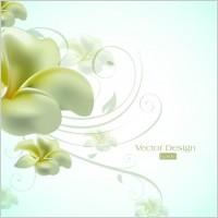 Link toText elegant lily design background vector