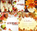 Link toThe autumn leaves vector