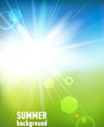 Link toThe bright summer sun vector