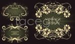 Link toThe classic european patterns vector