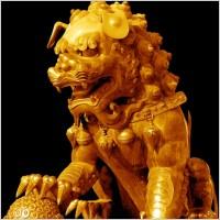 Link toThe copper gilt lions psd