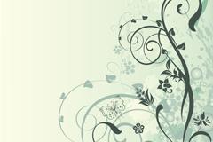 Link toThe fresh pattern design vector