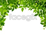 Link toThe leaves psd