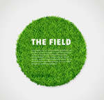 Link toThe round green lawn vector