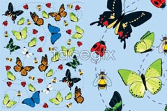 Link tovector butterfly of scene The
