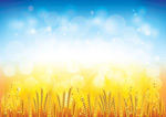 Link toThe wheat background vector