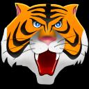 Tiger mask icon