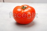 Link toTomatoes psd