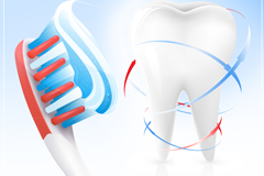Link toTooth and toothbrush design vector