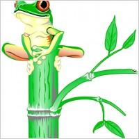 Link toTree frog 00125