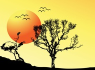 Link toTree sunset background vector free