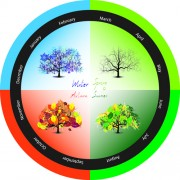 Link toTree with four seasons vector 03 free