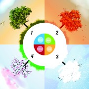 Link toTree with four seasons vector 05 free
