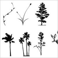 Link toTrees, flowers, rattan vector case material