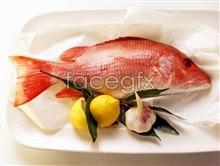 Link toTropical fish pictures hd