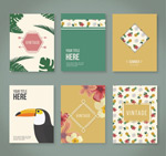 Link toTropical flower cards vector