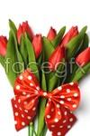 Link toTulip flower 3 psd