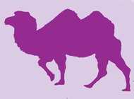 Link toTwo humped camel vector free