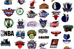 Link toUnited states nba basketball the insignia logo vector