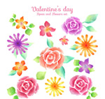 Valentine's day flower vector