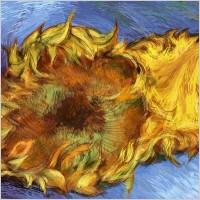 Link toVan gogh sunflowers vector
