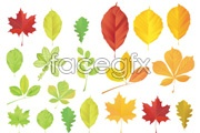 Link toVariety of beautiful foliage vector ii