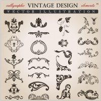 Link toVariety of european pattern vector